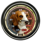 Beagle Thermometer example