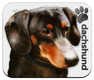 Dachshund_Dog Mouse Pad colors